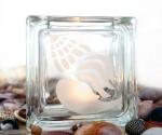 tea light candle holder seashell Buccinidae
