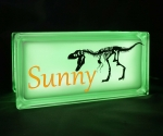Personalised glass block night light with dinosaur decal