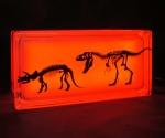 Glass block night light with dinosaur decal