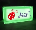 Glass block personalised night light with lady bug