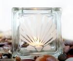 tea light candle holder seashell Pectinidae