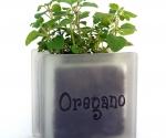 Herb pot glass block with oregano