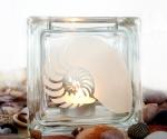 tea light candle holder seashell nautilus