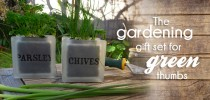 Gardening gift idea with glass herb pots