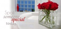 Glass block glass vase with red roses gift idea
