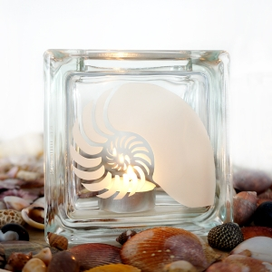 tea light candle holder seashell nautilus