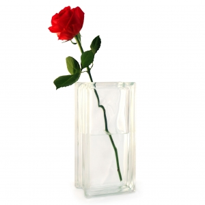Tall clear glass vase with single red rose