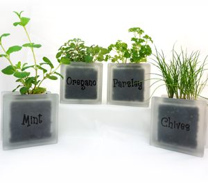 Glass block herb pots with parsely mint chives