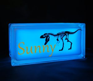 Nightlight with T-rex decal