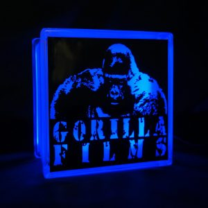 Gorilla Films glass block LED GLoblock light